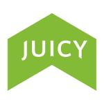 Juicy Electric Bikes